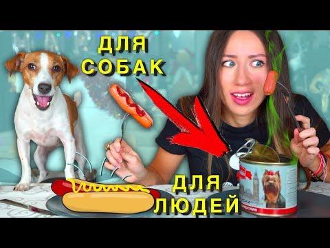 Собачья Еда ПРОТИВ