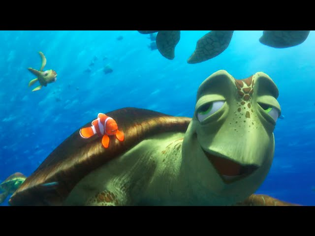"""Totally Sick"" Clip - Disney/Pixar's Finding Dory"