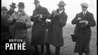 Coursing Meeting Greyhounds (1914-1918)