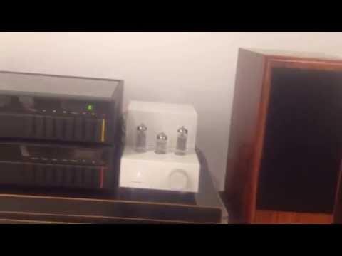 cute & mini tube amplifier  michelle t1