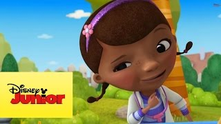 Doutora Brinquedos: Fantasias de Brinquedo