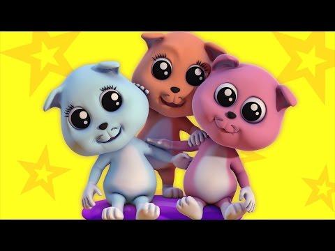 Three Little Kittens | kids rhymes | baby songs