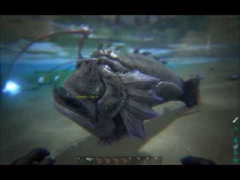 Ark survival evolved angler fish 223 0 youtube for Angler fish ark