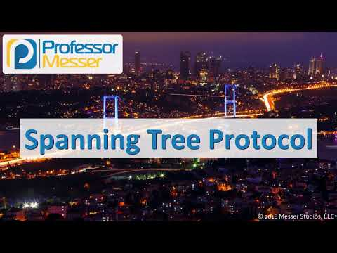 Spanning Tree Protocol - CompTIA Network+ N10-007 - 1.3