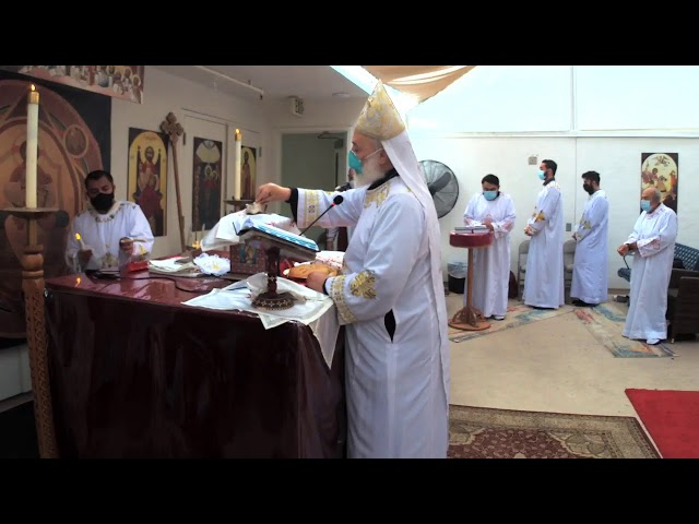 St. Mark Coptic Orthodox Church Live Stream
