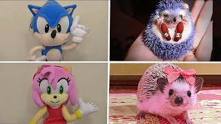 Sonic the Hedgehog in Real life Tails Amy Rose x in Plush