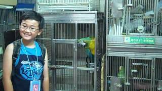 Bird Market @ HK