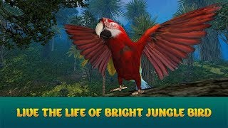 🐦Wild Parrot Sim 3D: Jungle Bird Fly Game-Симулятор Диких Попугаев-Virtual Animals World-Android