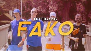 FELIX KRULL / NICKY NICE / FRANK WEISS / DOMO SANTANA - FAKO