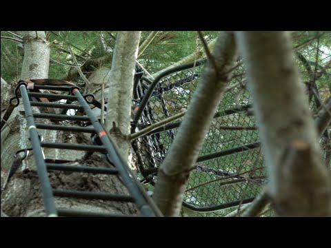 5 Hot Treestand Setup Tips For Big Bucks