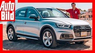 видео Audi Q5