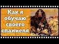 Охотничьи собаки 2 Охота с собакой Обучение и воспитание русского охотничьего спаниеля mp3