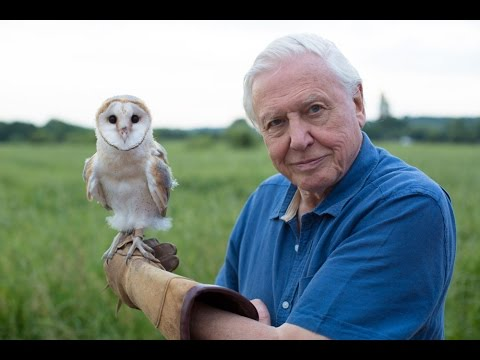David Attenborough's Conquest Of The Skies 3D - Series Intro