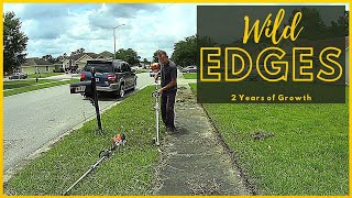 How To Edge an Overgrown Lawn - Sidewalk / Driveway Edging by a Pro - Stihl Stick Edger