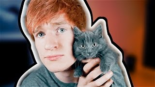 TRUTH OR DARE WITH CUTE KITTEN!