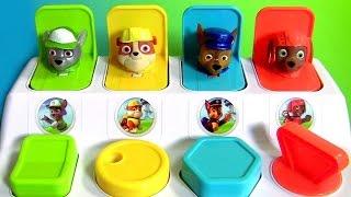 Patrulha Canina Pop-Ups Toys Surprise em Portugues