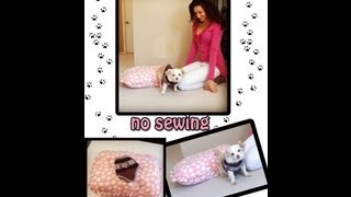 Diy Guide To Making A Pet Sweater And Pet Bed! No Sewing