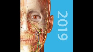 Human Atlas 2019 Complete 3D Human Body v2019.2.55