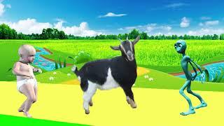 учить животных для малышей - животные для детей - видео развивающее #3