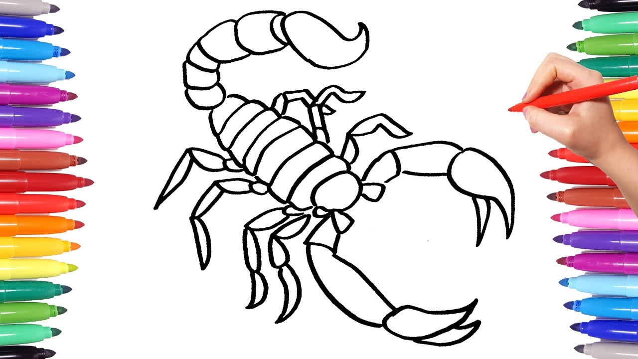 Colorful Scorpion Coloring Pages | Animal Coloring Book for Kids | How to Draw Scorpion