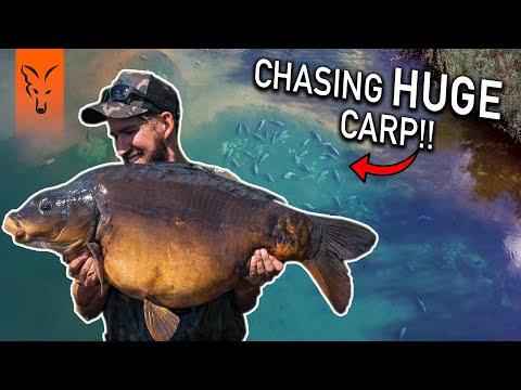 CARP FISHING EDGES | SEASON 1 | Windswept Whackers - Lewis Porter & Jim Wilson