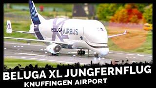 Airbus Beluga XL - Der größte JUNGFERNFLUG durchs Wunderland