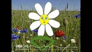 Vidéo Animation - Bon anniversaire Christine