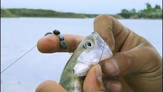 три озера за один день судак окунь карась рыбалка Алматы 2020