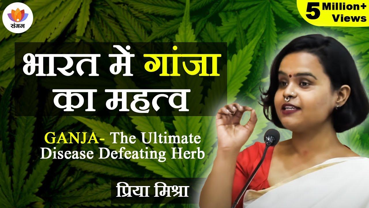 Download भारत में गांजा का महत्व | Cannabis in India | Priya Mishra | Medicinal Use Of Bhang In Ayurveda