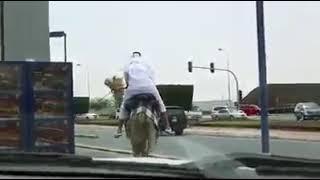 Burger King drive thru in Doha, Qatar - Funny Clip | برجر كنج يقود سيارته في دوحة ، قطر - كليب مضحك