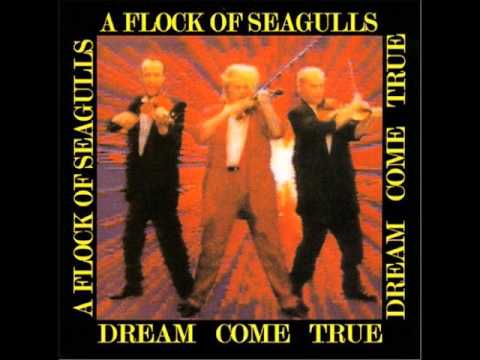 A Flock of Seagulls - (Cosmos) The Effect of the Sun