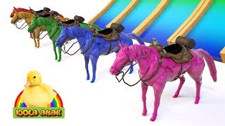 Belajar Warna Dengan Hewan Kuda Untuk Anak Anak | Learn Animals Name And Sound