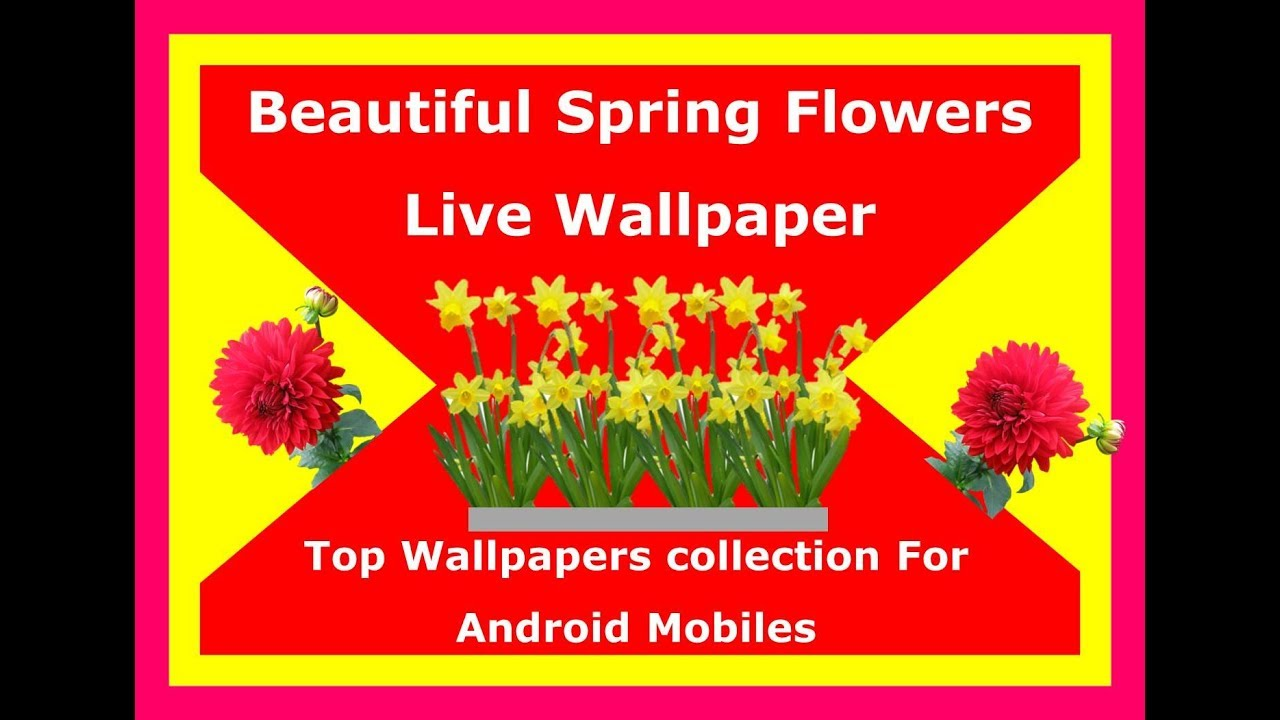 Beautiful Spring Flowers Live Wallpaper 2018best Live Wallpapers