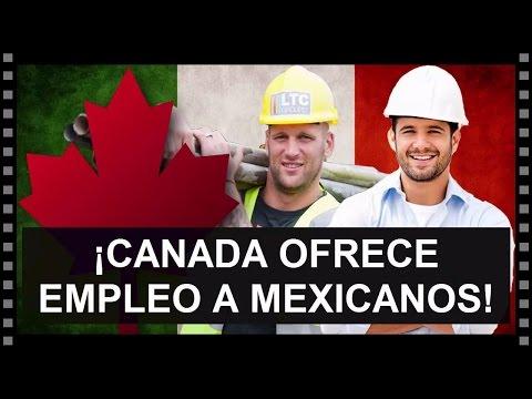 CANADA BUSCA EMPLEADOS MEXICANOS