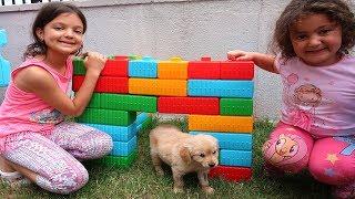 Elif Öykü ve Masal Köpeğine Kulübe Yaptı - Kids made Toy House for his Dog Pretend Play Fun Kid