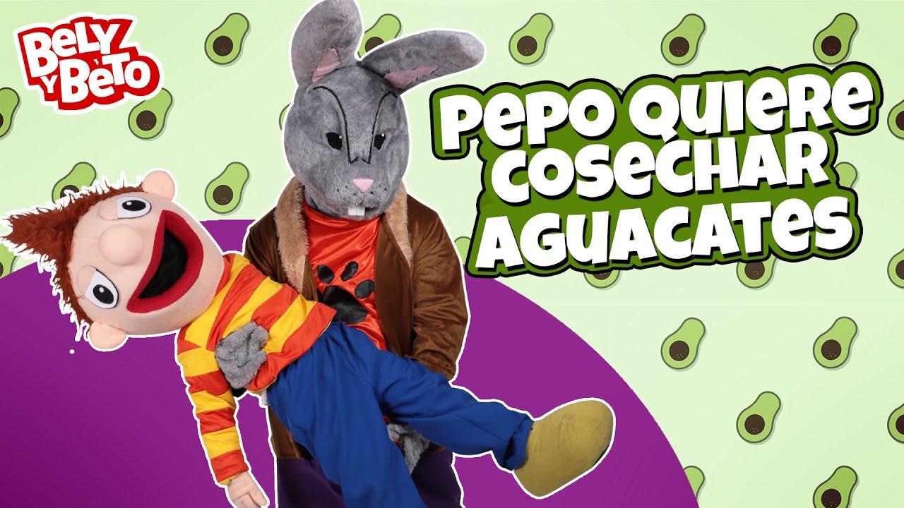 Pepo Quiere Cosechar Aguacates - Bely y Beto