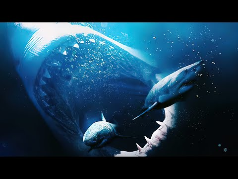 10 AMAZING FACTS ABOUT MEGALODON