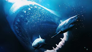 Megalodon: 10 Facts About The Biggest Shark Ever !