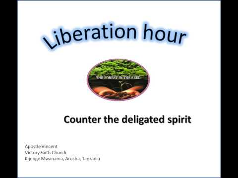 Liberation hour-Apostle Vincent on Counter the Delegated spirit