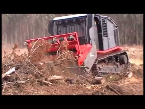 Tree Services In Arp, TX | Land Services In East Texas!