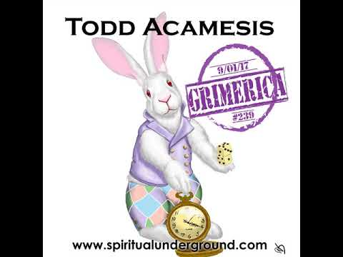 #239 - Grimerica Talks Flow States, Synchronicities & more with Todd Acamesis