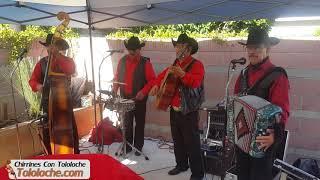 El Chubasco Chirrines Con Tololoche 818-290-4645