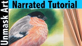 How to Color Bird Feathers | Narrated Tutorial