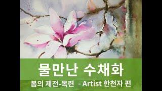 [Watercolor painting]봄의 제전-목련/…