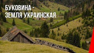 Буковина - земля Украинская (1940) документальный фильм