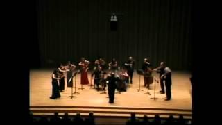 Schubert: Quartet in G Minor  1st movement (orchestra version)