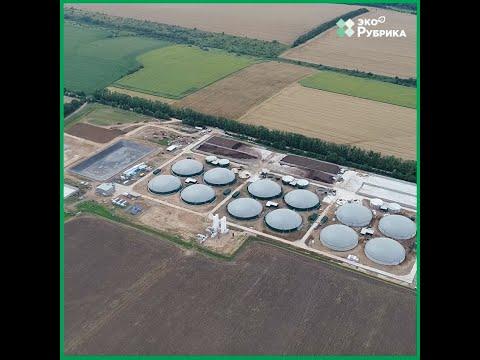 Растения и отходы могут нас согреть. Как в Украине развивают производство биогаза