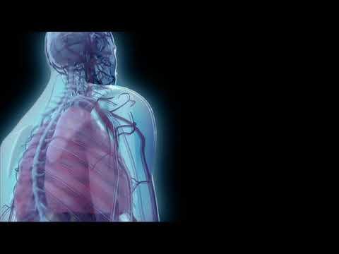 15 Min 528 Hz Nerves Regeneration and DNA Repair & Healing Binaral Beats  solfeggio Frequency healin