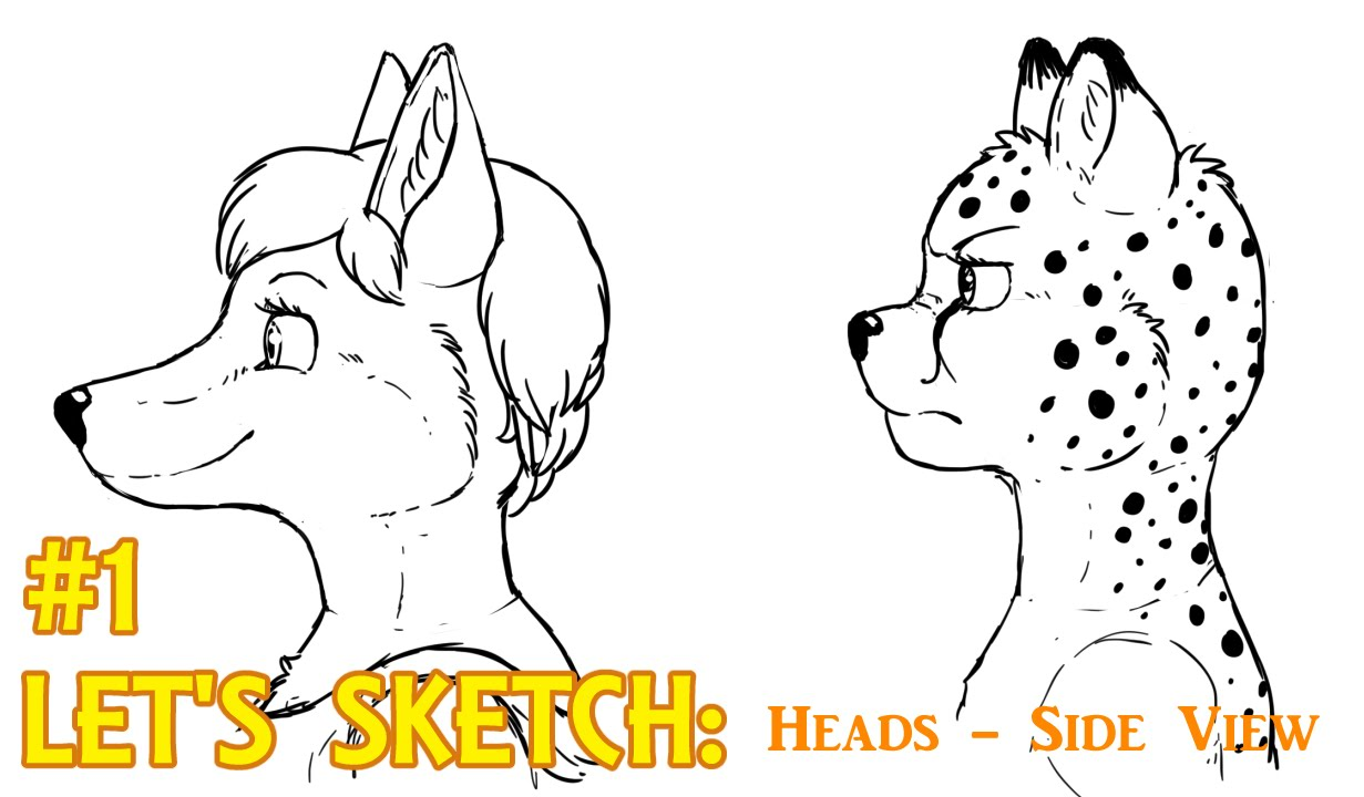 Let S Sketch 1 Anthro Furry Art Heads Side View Youtube
