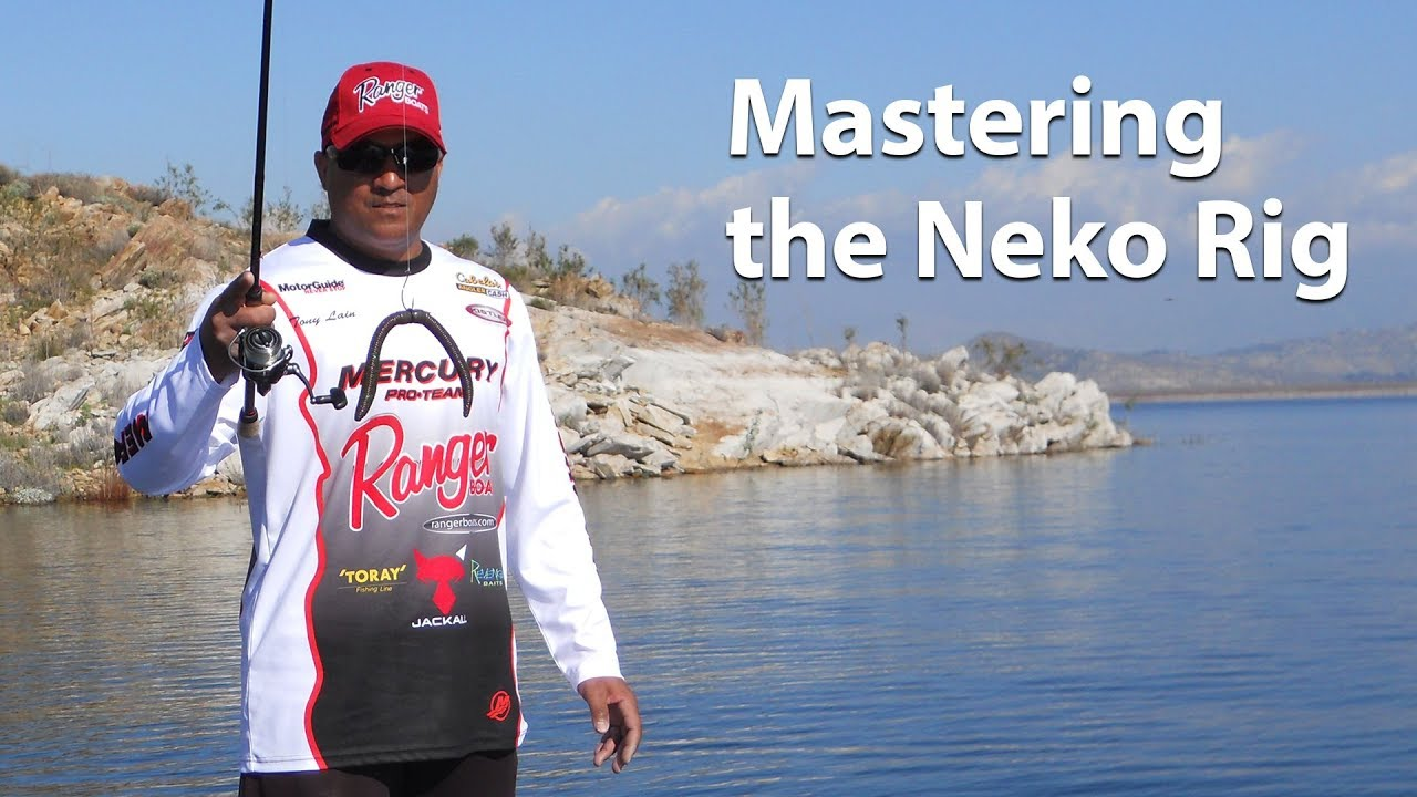 Webinar mastering the neko rig fishing for Neko rig fishing